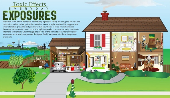 home-shows-toxic-everyday-exposures-toxins
